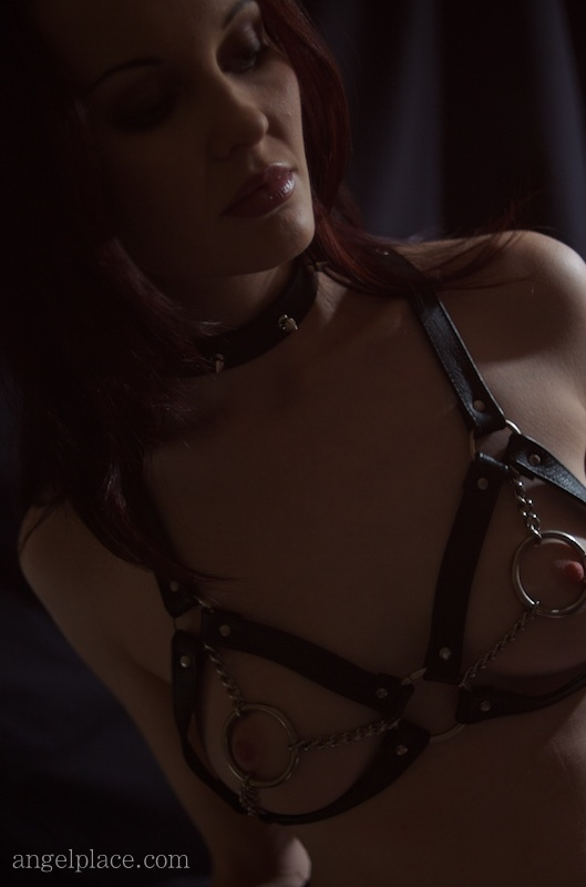 Harness in the dark.